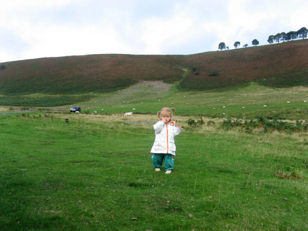 Het park North York Moors bestaat vooral uit hooggelegen heidevelden afgewisseld met valleien.