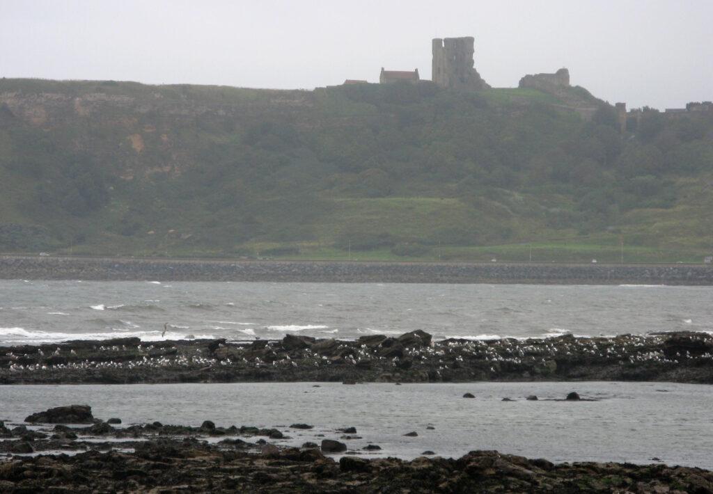 Whitby Abbey ligt bij het kustplaatsje Whitby.