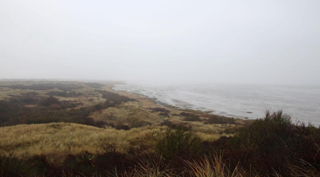 Natuurgebied Het Oerd op Ameland.