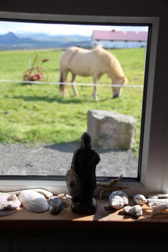 Uitzicht vanuit het Bjarnarhöfn Shark Museum.