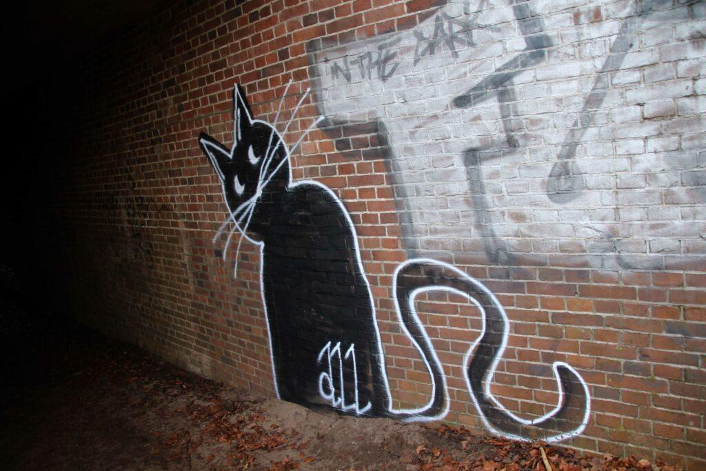Graffiti in de tunnel die onder het spoor doorgaat in NP Zuid-Kennemerland.