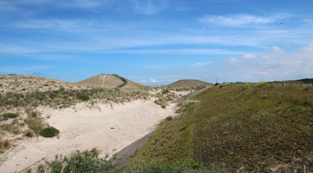 Hier zie je duidelijk rechts nog de dijk en links het opgespoten zand dat een heel nieuw duinlandschap heeft gemaakt.