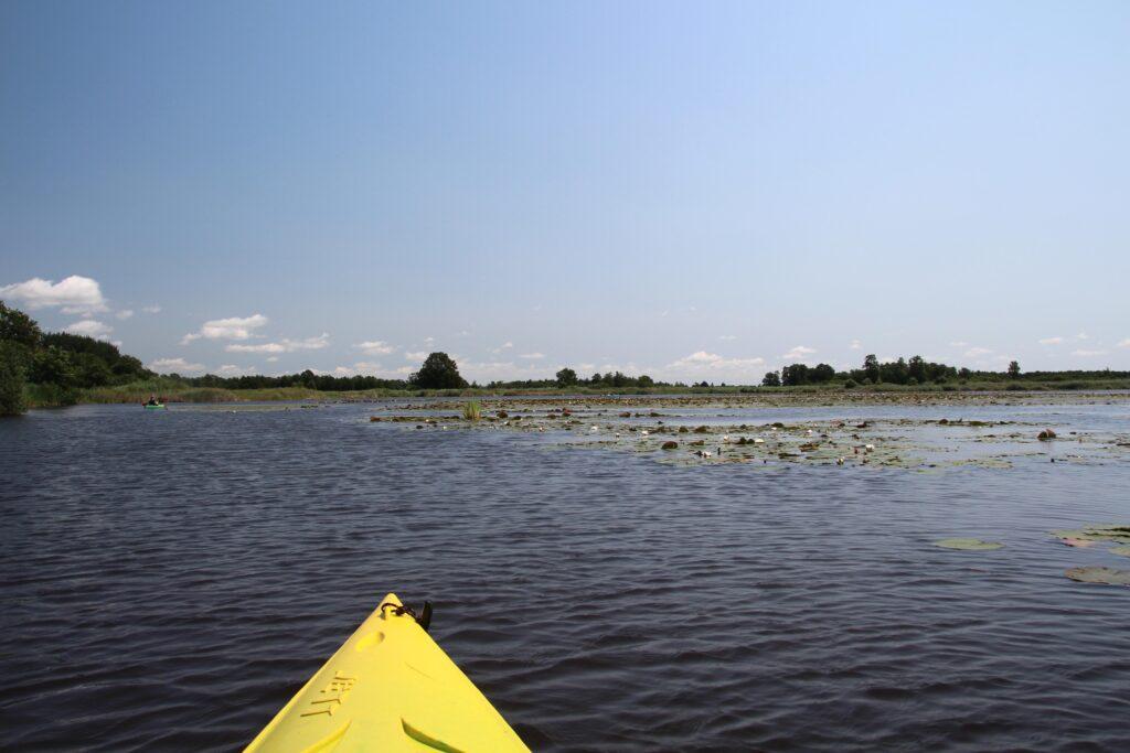 Rust en stilte op het water van NP Weerribben-Wieden