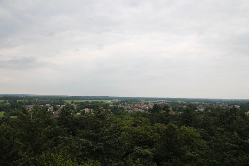 Vanaf de Bosbergtoren heb je uitzicht over het NP Drents-Friese Wold.